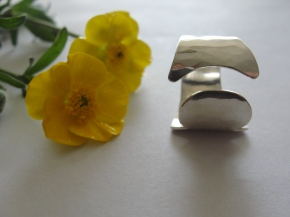 The Missing Piece,Ring